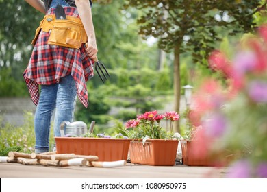 Containers with pink flowers next to gardener with toolbelt during gardening work on terrace