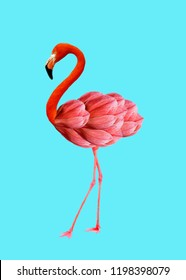 Contemporary art collage. Flamingo with Magnolia flowers as a head.