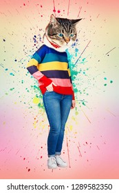 Contemporary art collage full body portrait casual kitten headed woman wear jeans and rainbow sweater posing with hand in pocket. Modern style pop art zine culture concept. Funny cat transformation.