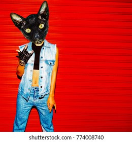Contemporary art collage. Fun art. Stylish Denim Outfit Cat.