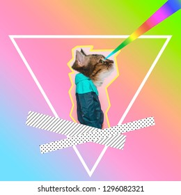 Contemporary art collage of man with cat head shooting by rainbow lazers from eyes