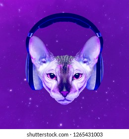 Contemporary art collage. Music concept.  Space Cat DJ