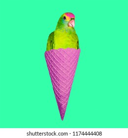Contemporary art collage. Parrot Ice cream. Funny Fast food minimal project