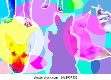 Contemporary art collage with silhouette of dog. Illustration of smoking dog on bright background