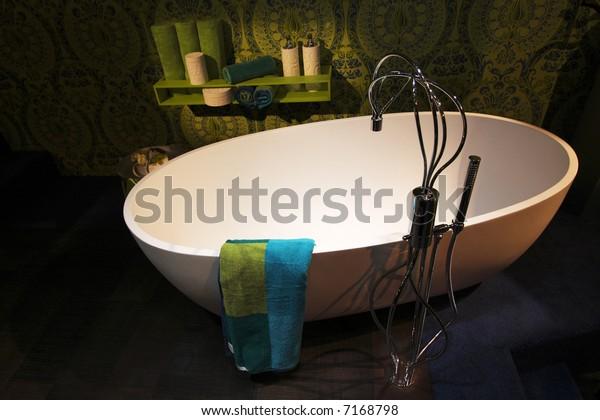 Contemporary Bathroom Scene
