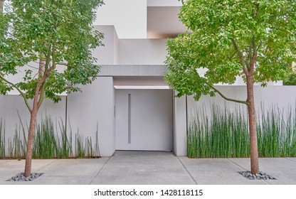 Contemporary family white house entrance door by the sidewalk and two trees