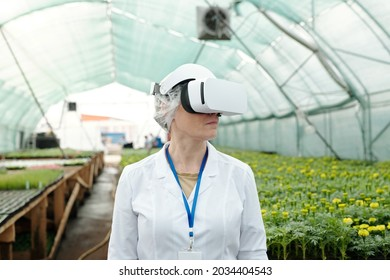 Contemporary female expert in 3d headset standing against growing seedlings in large hothouse