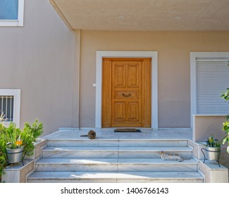 contemporary house entrance marble stairs and natural door with two cats laying, Athens Greece