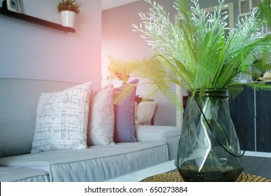 Contemporary interiors of the living room with sofas on sunny days and white interior background ideas.