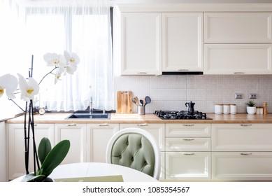 contemporary kitchen with modern furniture and flower. interior design modern
