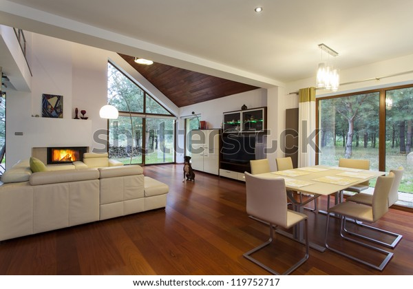 Contemporary living room with the sitting dog
