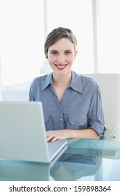 Content attractive businesswoman using her notebook sitting at her desk smiling at camera
