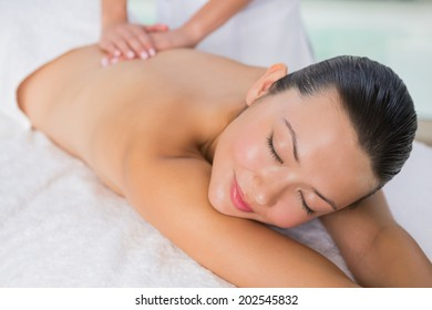 Content brunette enjoying a back massage at the health spa
