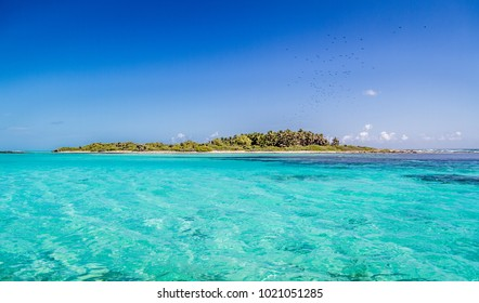 Contoy Island in Mexican Caribbean Sea