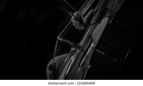 Contrabass played in the low light
