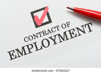 CONTRACT OF EMPLOYMENT, check box