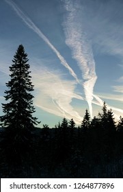 Contrail tracks from plain traffic over a forest