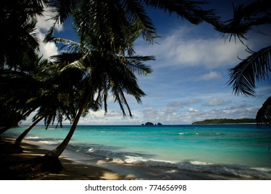 The contrast between the silhouette of the palm tree and the turquoise ocean of the mentawai in west sumatra, Indonesia.