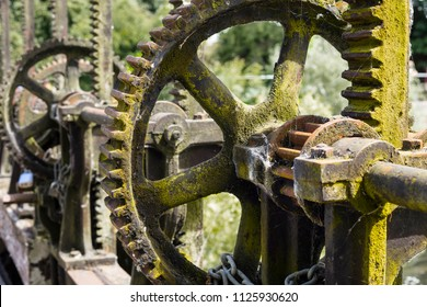 Control Gear wheel for UK canal