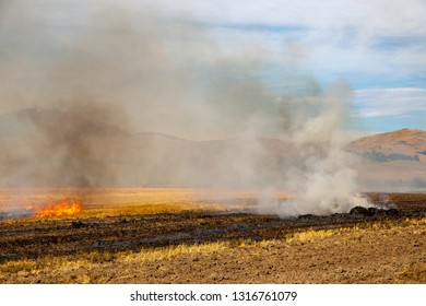 A controlled fire burns in a rural field to clear the ground of stubble so another crop can be planted
