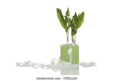 Convallaria majalis with feathers isolated on white background