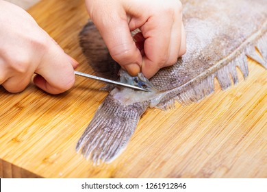 cook cutting fish flounder, female hands closeup