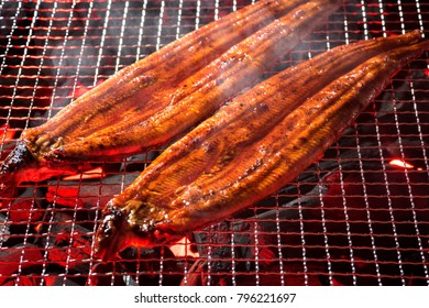 Cook the Grilled eel