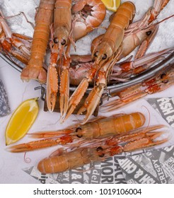 Cooked Langoustine with lemon in a tray