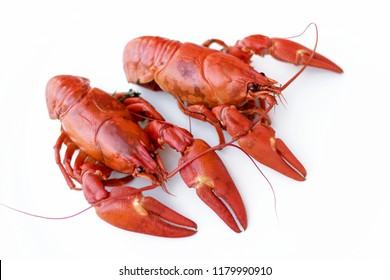 Cooked Red Crawfish