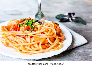 Cooked spaghetti pasta with cream sauce, tomatoes, parsley in a plate, selective focus.Italian style pasta. Traditional italian food. Image with copy space.