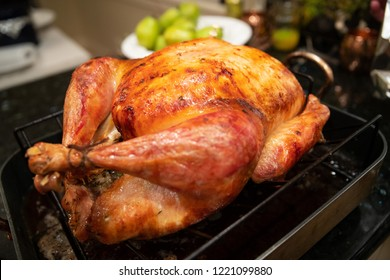 Cooked turkey for Thanksgiving dinner