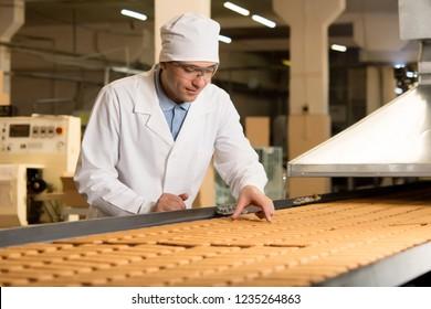 cookie factory making pastry conveyor fresh biscuit