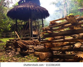 Cooking Ayahuasca Medicina - beautiful large piece of Ayahuasca vine and the stuck of firewood prepared for cooking the brew with a fireplace and smokey background.