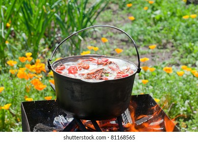 cooking crabs in a pot over a fire in the nature