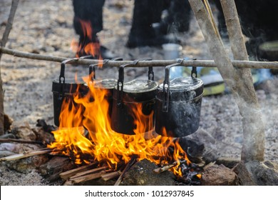 Cooking in the forest