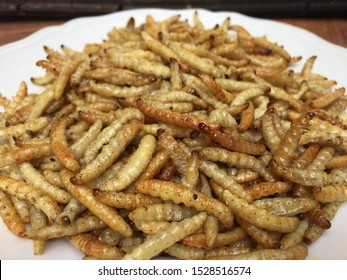 Cooking with the most delicious maggots