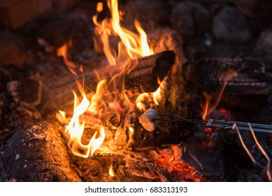 Cooking smores in burning wood camp fire