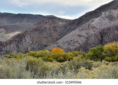 Cool fall day in the high desert