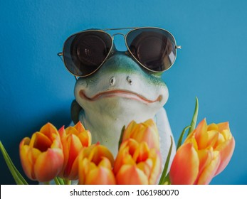 cool frog with sunglasses holding a bunch of flowers and looks like the hidden dream prince