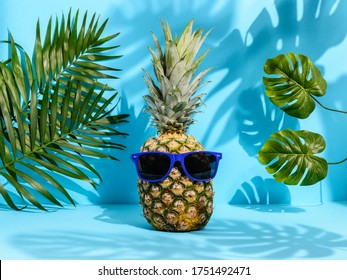 Cool hipster pineapple in sunglasses among palm and monstera leaves on blue background. Strong tropical shadows. Hawaiian vacation in paradise, summer concept