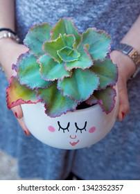 Cool suculent plant