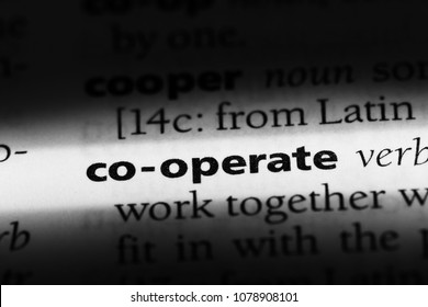 co-operate word in a dictionary. co-operate concept