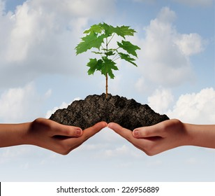 Cooperation growth business symbol as two hands holding up a heap of earth with a tree sapling growing.