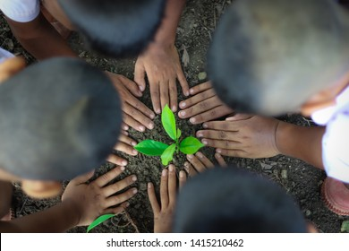 Cooperation in planting trees has many hands to help grow and help to protect the environment and reduce global warming.