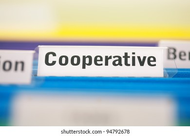 Cooperative business organization filed in blue folders