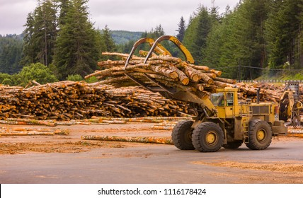 COOS BAY, OREGON, USA - JULY 21, 2009: Front end log loader working the log yard, Weyerhaeuser lumber mill.