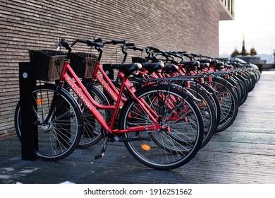 Copenhagen, Denmark - December 21, 2017. Lots of touristic bikes with basket lined up belong to Bedwood Hostel in Copenhagen