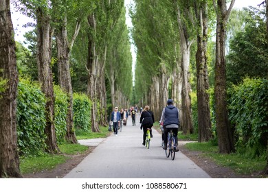 Copenhagen, Denmark - June 10, 2017: People in a tree alley on famous Assistens Cemetery
