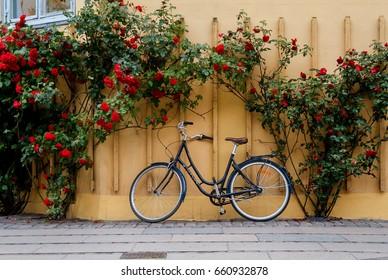 COPENHAGEN, DENMARK, JUNE, 2016: Spring in Copenhagen. Bike and Flowers around the City.