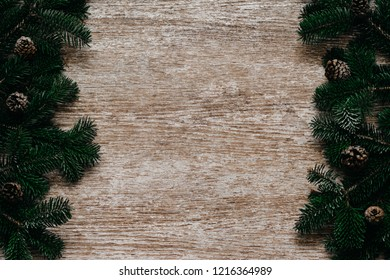 Copy space. Christmas concept.  Spruce branches